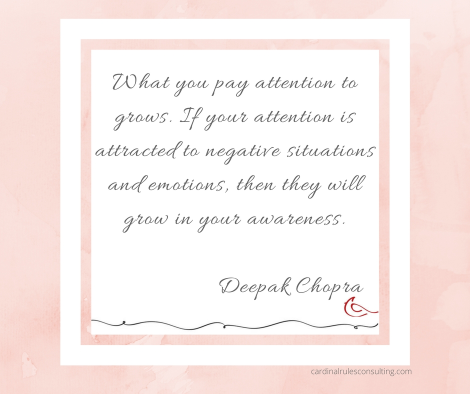 What you pay attention to grows